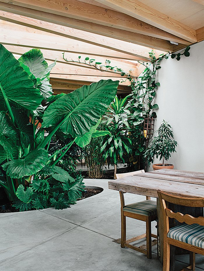 Outdoor, Walkways, Gardens, and Hardscapes Custom skylights by Berkeley's DeFauw Design+Fabrication set above scissor trusses let in the sunlight.  Photo 25 of 41 in 50 Dashing Dining Rooms from This Home is Complete with an Indoor Jungle