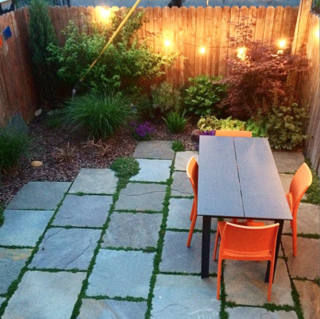 Photo of the Week: Cozy Brooklyn Backyard - Photo 1 of 1 -
