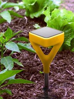 A Smart Tech Tool That Will Help Novice Gardeners Kill Fewer Plants - Photo 1 of 3 -