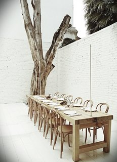One of the private dining rooms at Hueso includes a dead tree that Cadena says sat in front of the building for six years. Initially, he was going to design a suite of custom chairs for the restaurant, each one with individual features, but he settled on classic Thonet chairs instead.