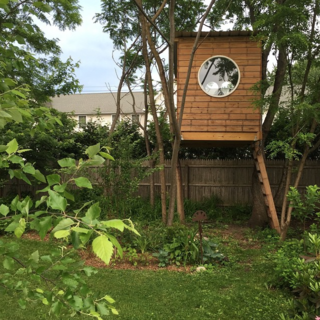 Photo of the Week: Modern Backyard Tree House - Photo 1 of 1 -