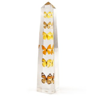 The Lucite Butterfly Obelisk is a unique home accent allowing a view of various butterflies from all angles.
