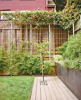 A Two-Part Landscaping Renovation in San Francisco - Photo 5 of 6 -