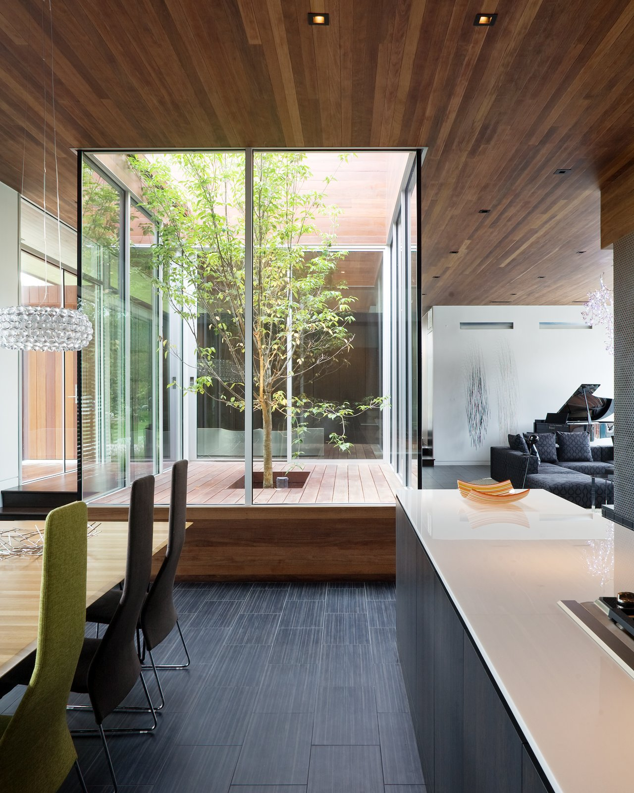 An interior glass courtyard anchors the central living areas—the dining room, foyer, living room, and kitchen all circulate a living tree. This was installed for natural light and to reinforce a connection between the indoors and outdoors.  Photo 3 of 10 in A Bold Home Creatively Combines Curves and Modern Lines