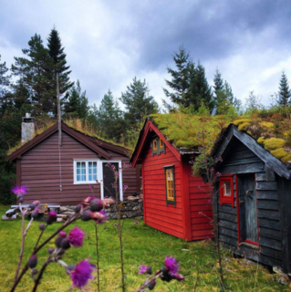 Photo of the Week: Trio of Cozy Cabins with Planted Roofs - Photo 1 of 1 -