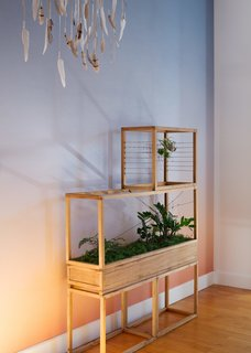 "A sculptural terrarium brings the landscape indoors. This two-tier wooden box planter is but one of many designs by Plant-in City, a cooperative of artists and technologists who create a series of intricate, micro-ecosystems of ""green architecture."""