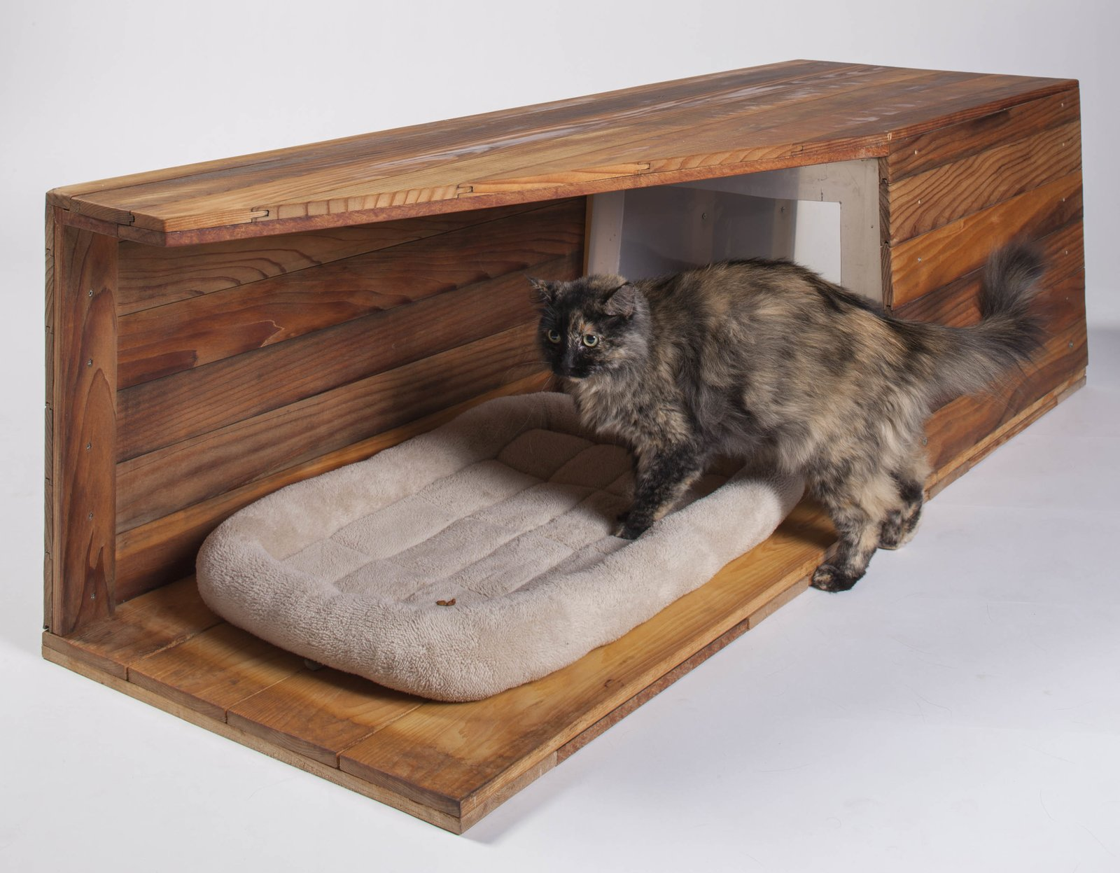 Douglas Teiger, managing principal at Abramson Teiger Architects of Culver City, designed and built this cat house with his 11-year-old son, Jared, using leftover cedar siding and an old plastic box. The total cost: under $20.  Photo 20 of 21 in 21 Cats Living in the Modern World