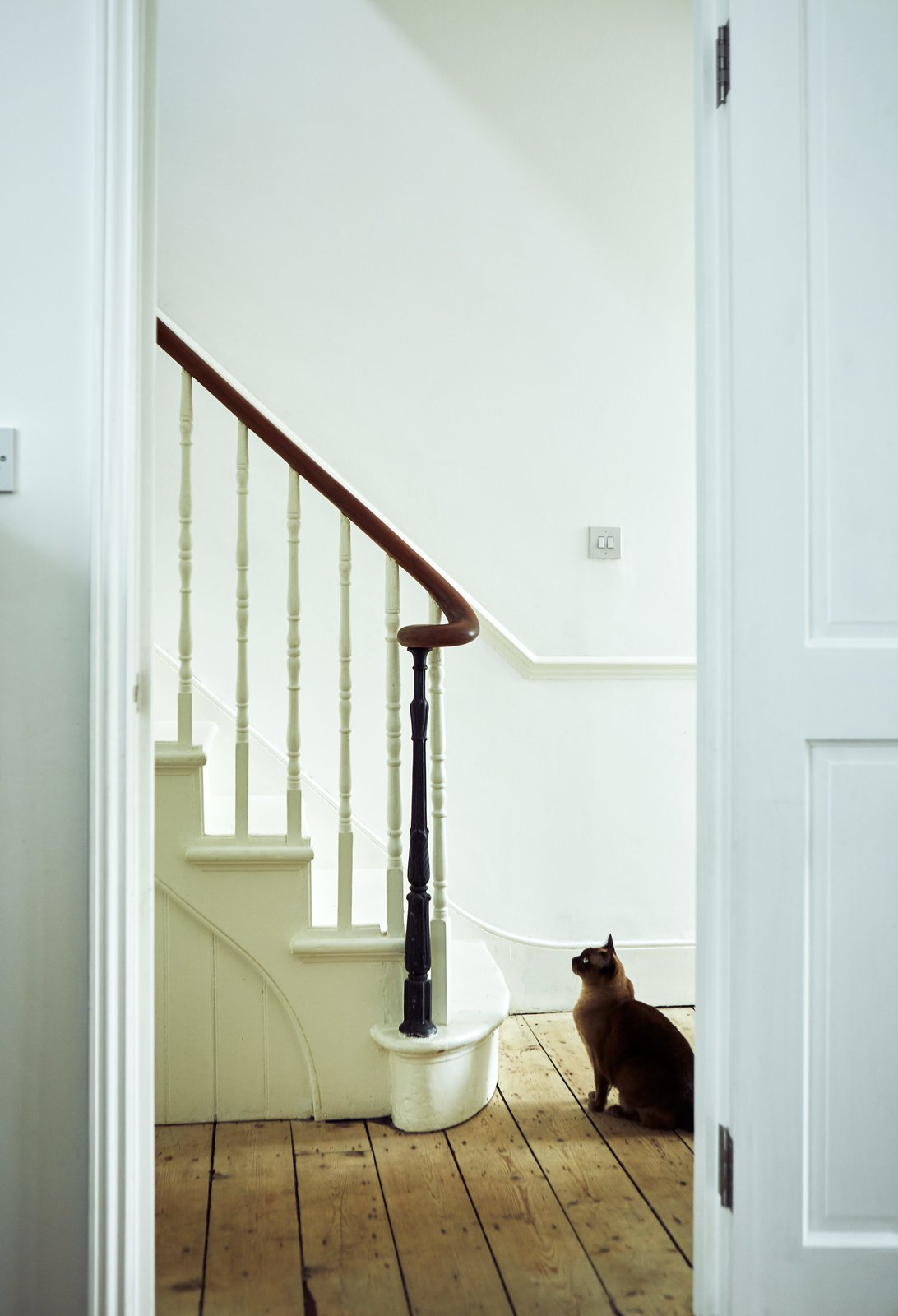 Staircase, Wood Tread, and Wood Railing The hallway's matte-white paint is a crisp backdrop to refurbished details like the balustrade.  Photo 13 of 21 in 21 Cats Living in the Modern World from This Kitchen Is as Cozy as Your Favorite Coffee Shop and That's Exactly the Idea