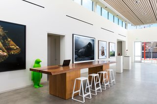 "Berke's design balances grand public spaces with ""intimate, inviting"" private spaces. The entry points to the hotel are categorized by high ceilings and polished concrete floors, and incorporating natural light is a central focus throughout the 100,000 square foot property. The sleekness of the space is contrasted by a rich wooden table, which serves as a check-in desk, by Simplemente Madera. The green penguins spotted throughout the building are by Cracking Art Group."