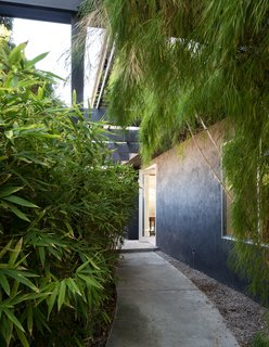5 Reasons Why Landscaping and Bringing Plants Into Your Home Is So Valuable - Photo 4 of 11 -
