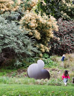 "Another important element to the overall design scheme is the incorporation of sculpture, intended to encourage interaction between the landscape and the art. Roundout, 2005, an aluminum piece by Travis Constance, is found amid native grasses, including feathery yellow Nassella tenuissima, which acts ""as a nest for the sculpture,"" says Wyllie. It is joined by a cotoneaster, a flowering plant with red berries, and a yellow-blooming acacia."
