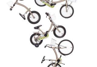 Bike Sharing's Growing Pains