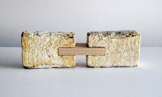 Mushrooms: Building Blocks of the Future? - Photo 2 of 2 - MycoWorks's  fungus bricks.