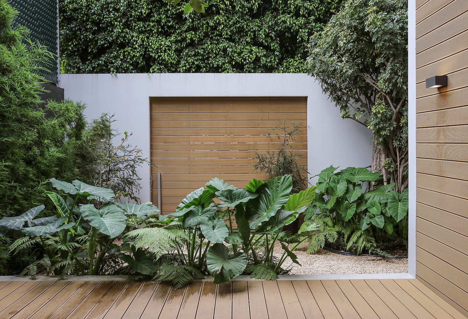 "Outdoor, Horizontal Fences, Wall, Side Yard, Wood Patio, Porch, Deck, and Walkways ""Not a drop  of water is wasted here,"" Nina says of the yard. ""This is huge  for Mexico City. The whole terrace  is a water collector.""  Photo 6 of 13 in Retired Couple Build Modern in Mexico City"