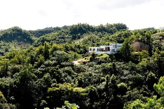 This view of Villa Arboleda shows the incredible amount of rich forest that surrounds the hillside escape.