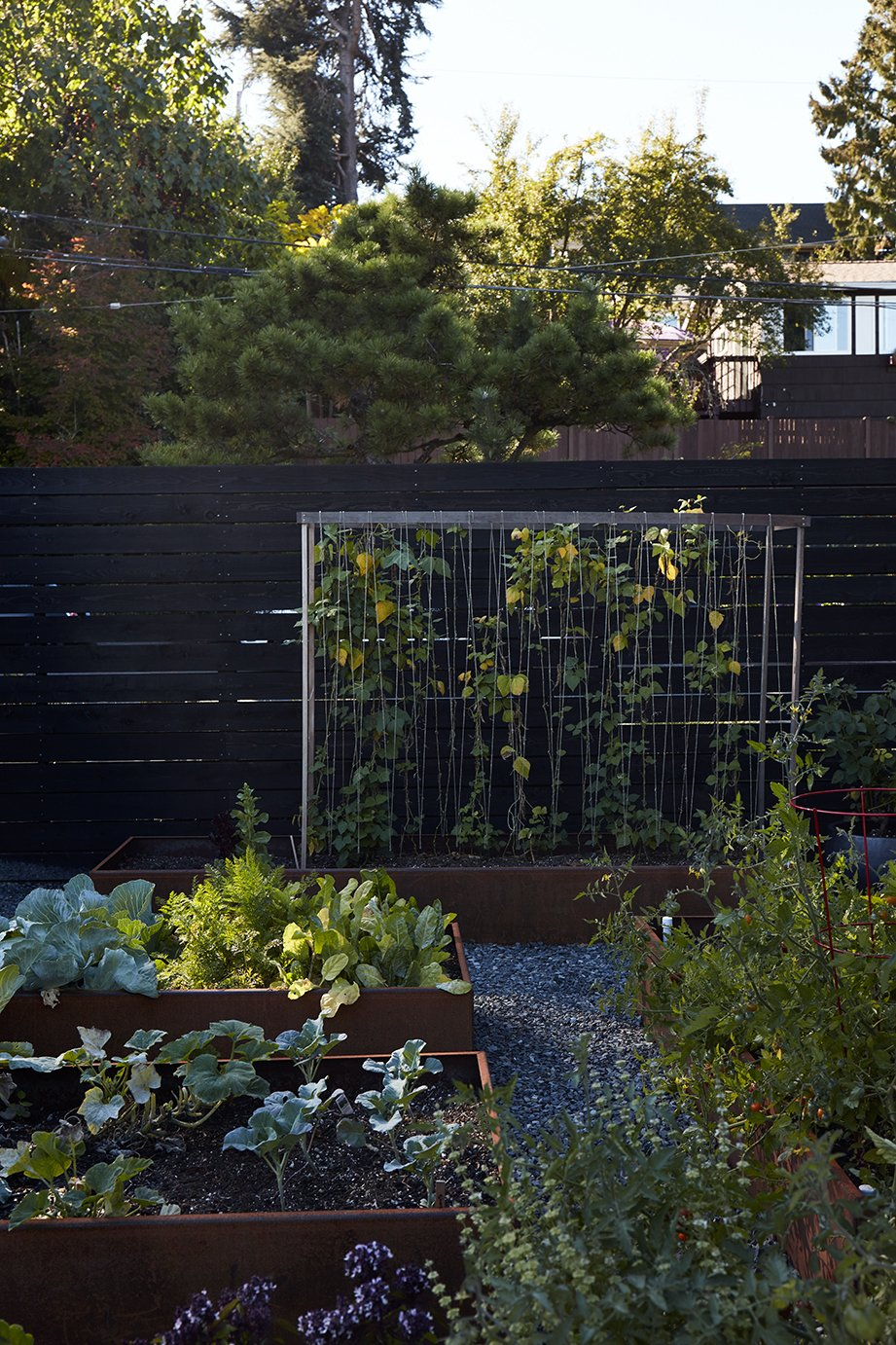 Outdoor, Back Yard, and Garden In the garden, vines of honeysuckle are intertwined on a steel-mesh trellis.  Photo 13 of 15 in Greener Grass