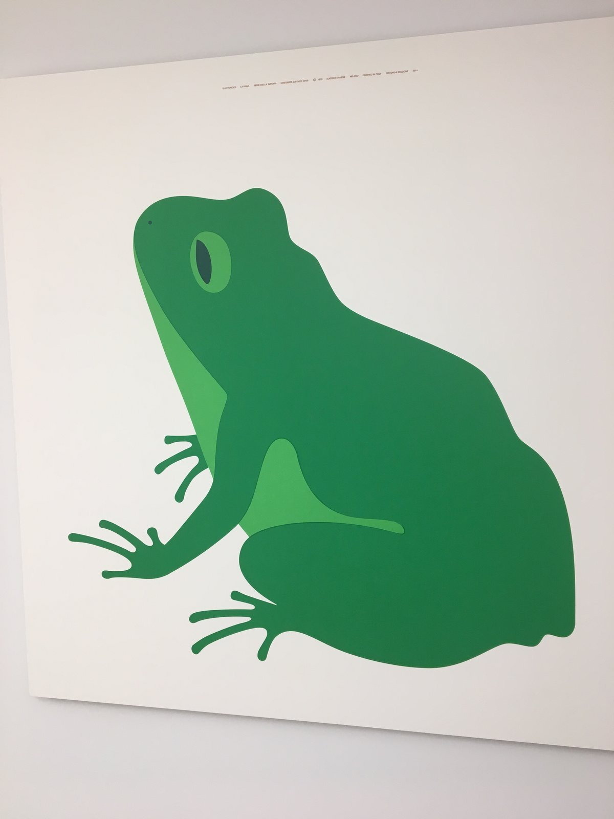 Rana, 1976, a silkscreen by Enzo Mari. We just snuck him in here because we like him.  Photo 26 of 36 in The Best of New York Design Week 2017
