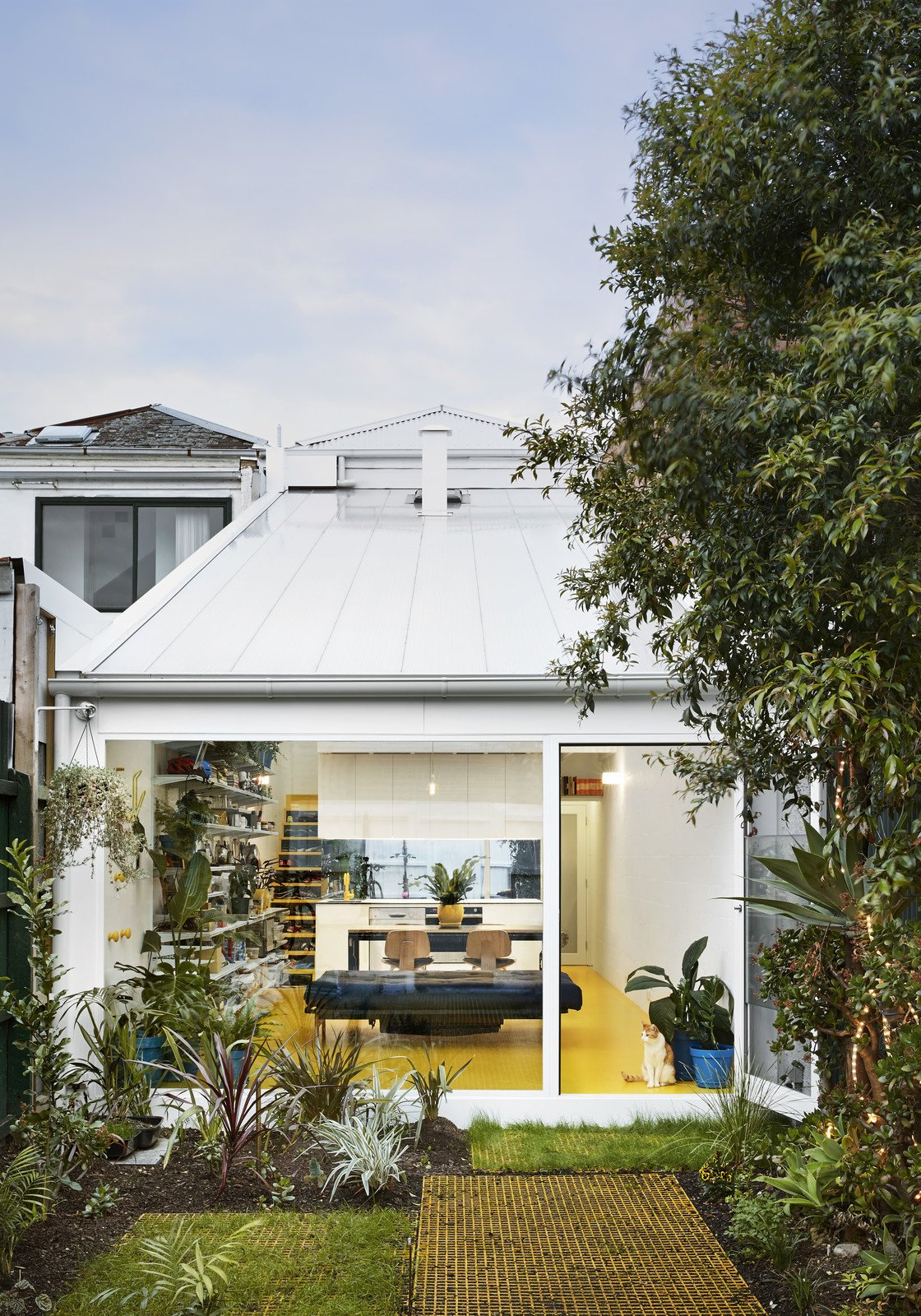 Outdoor, Back Yard, Grass, and Shrubs  Best Photos from An Architect Turns His Victorian Home Into a Sun-Drenched Live/Work Space