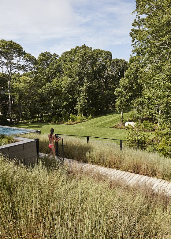 """Outdoor, Trees, Back Yard, Grass, Swimming Pools, Tubs, Shower, and Walkways """"I really wanted to explore the potential of the property, because the original house was probably using one-tenth of its capacity,"""" says Masi, who also conceived the landscape and lighting design. He selected native grasses and other plantings for their ability to move with the wind.  Photo 8 of 11 in A Family Retreat in the Hamptons Bridles Wind, Water, and Light"""