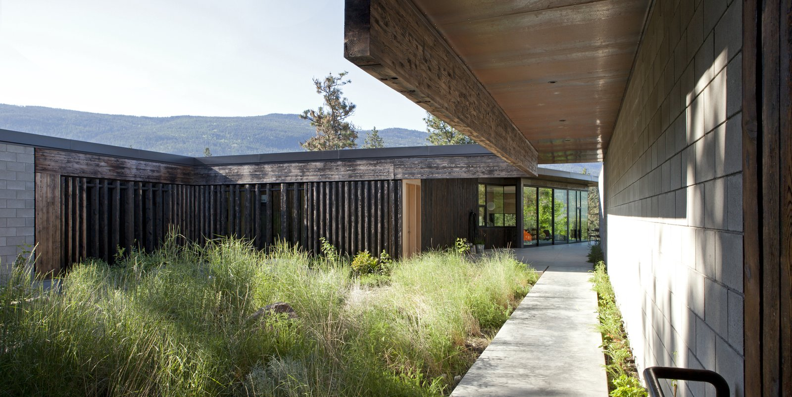 A Hilltop Home in British Columbia That Seems to Grow Out of a Park