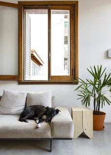 In the living area, their dog, Rocknrol, hangs out on a suede Copenhagen sofa by Alejandro Sticotti for Net Muebles.