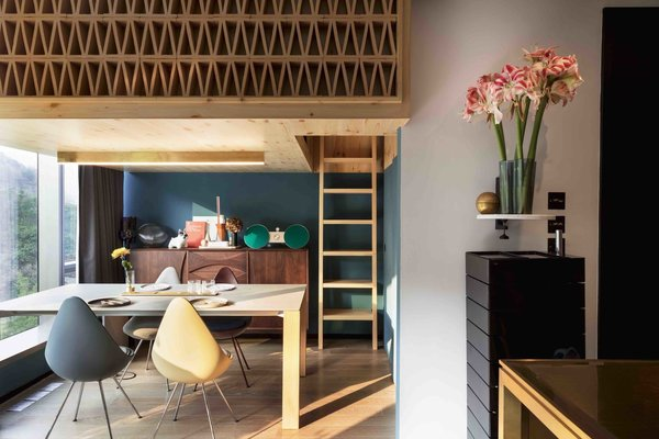A Tiny Hong Kong Apartment With a Tree House-Inspired Loft