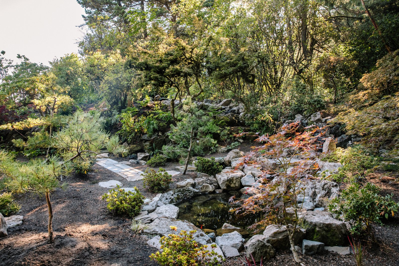 Outdoor, Garden, Trees, Shrubs, Boulders, Gardens, and Walkways A strolling garden and a pond with a waterfall have already been brought back  Photo 8 of 15 in Nearly 80 Years Later, an Architect Rescues a Japanese-Inspired  Masterwork Designed by His Father