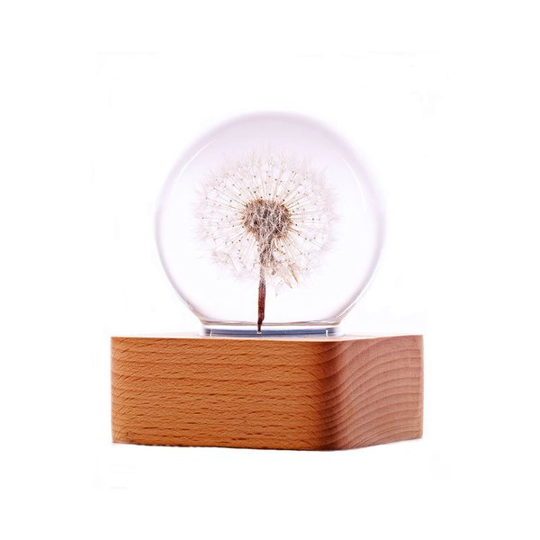 Dandelion Mood Light (3 Versions)