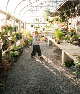 This 120-Year-Old Home With a Greenhouse Is a Gardener's Paradise - Photo 12 of 27 -