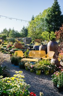 This 120-Year-Old Home With a Greenhouse Is a Gardener's Paradise - Photo 14 of 27 -
