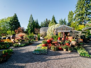 This 120-Year-Old Home With a Greenhouse Is a Gardener's Paradise - Photo 9 of 27 -