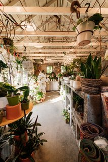 This 120-Year-Old Home With a Greenhouse Is a Gardener's Paradise - Photo 7 of 27 -