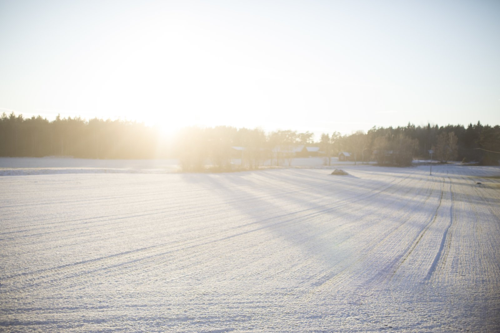Outdoor and Woodland  Photo 15 of 15 in 72 Hours in Småland, Sweden—Part Two