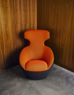 The Edito chair in the den is by Sasha Lakic.
