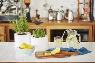 Clueless About Gardening? These 5 Smart Planters Can Help