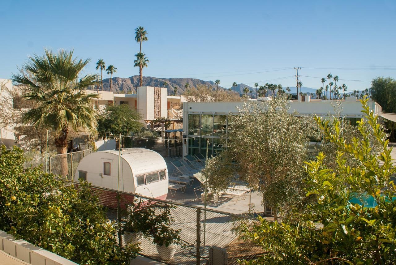 Outdoor, Back Yard, Desert, Trees, Concrete Patio, Porch, Deck, and Large Patio, Porch, Deck  Ace Hotel & Swim Club