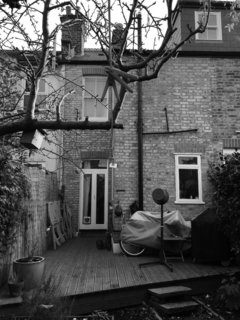 "By filling in the ""side return""— a narrow outdoor area typical to London terrace houses—Andrew and Emma Boyd were able to double the size of their kitchen."