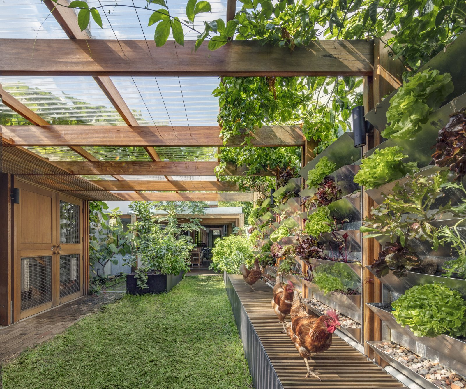 Outdoor, Side Yard, Garden, Walkways, Gardens, and Grass  Best Photos from A Sustainable Home Near Sydney Boasts Chicken Coops, Vertical Gardens, and More