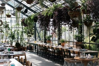 Next to the shimmering pool on the second floor of L.A.'s The LINE, the hotel's restaurant is housed in a lush, urban greenhouse with ferns and succulents hanging from the ceilings.