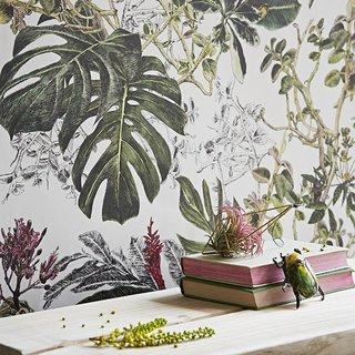 Sian Zeng Classic Seasons Wallpaper Summer Tropical Bloom