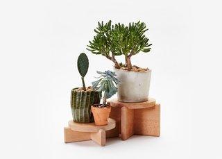 Areaware Plant Pedestals