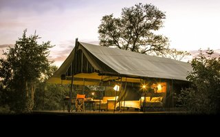 Honeyguide Tented Safari Camps in Kruger National Park, South Africa