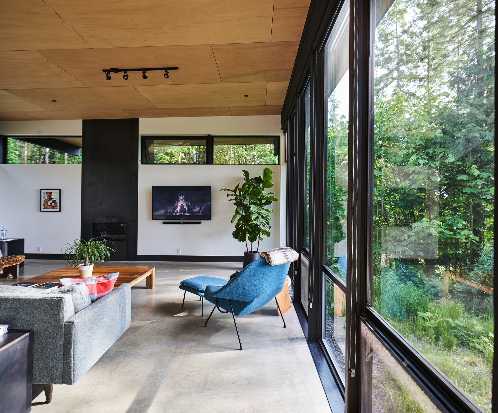 Wooden ceilings ground some of the home's more industrial features in its organic setting.