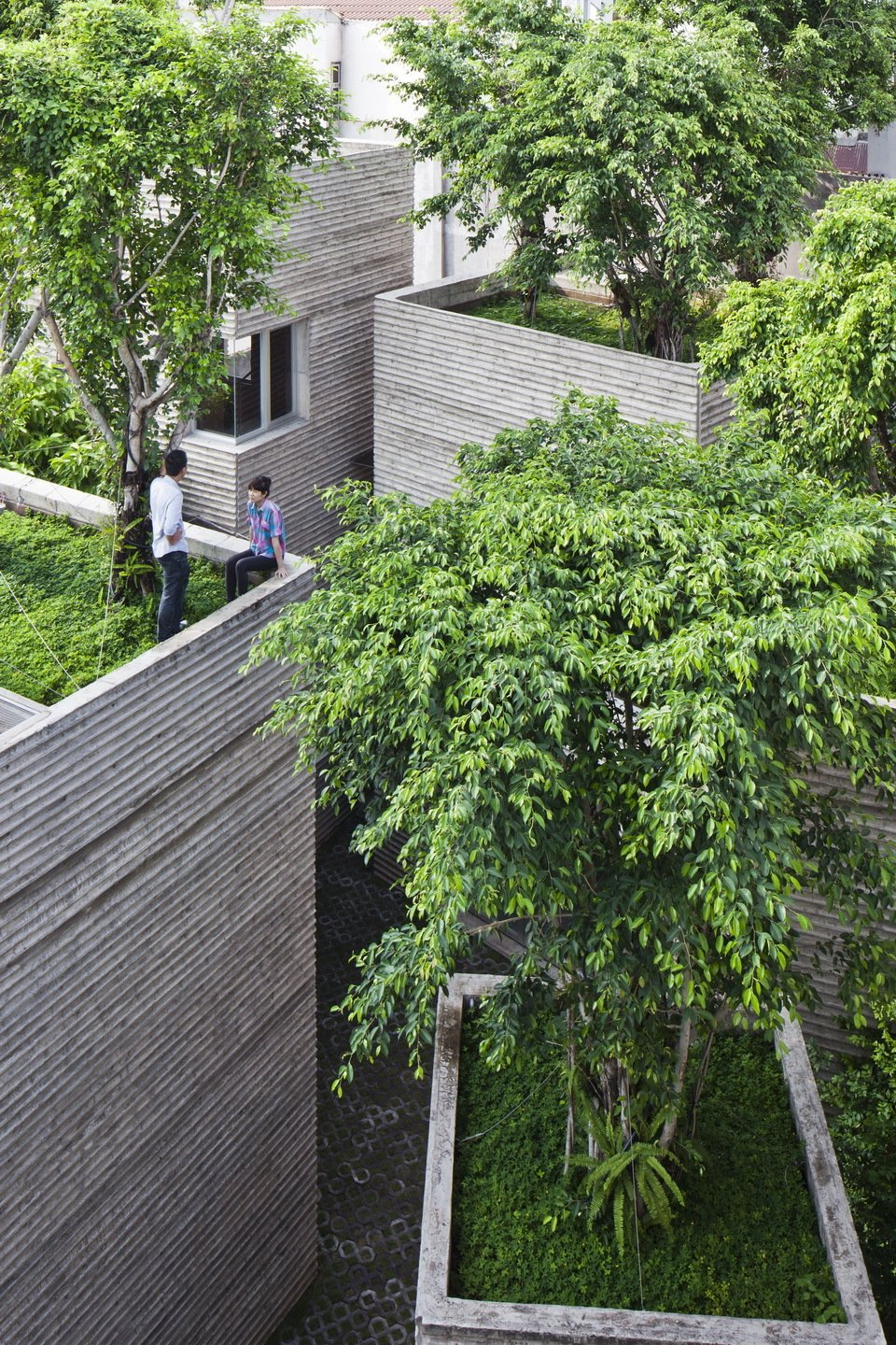 A Concrete Home in Vietnam Is Topped With Trees