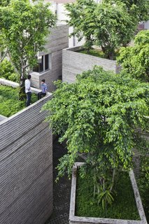 In Ho Chi Minh City, only 0.25 percent of the landscape is covered with greenery.