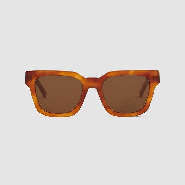 NEED Agent Sunglasses in Tortoise Light
