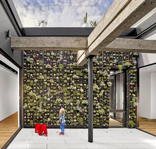 While creating a live/work space at a former garage for Klari Reis and Michael Isard, architect Eric Dumican carved out an atrium on the second floor to bring in light. Three sides open with Fleetwood sliders; the fourth is a living wall by Planted Design using Florafelt Pro System.