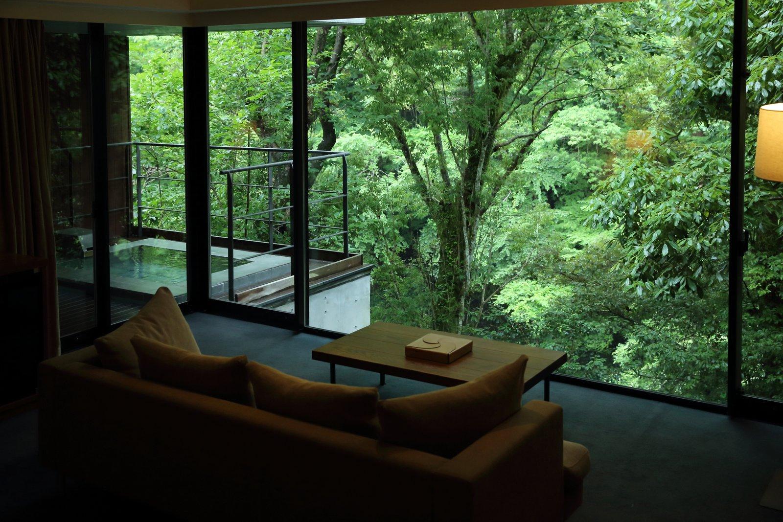 Living Room, Sofa, Coffee Tables, Carpet Floor, and Floor Lighting  Arcana Izu