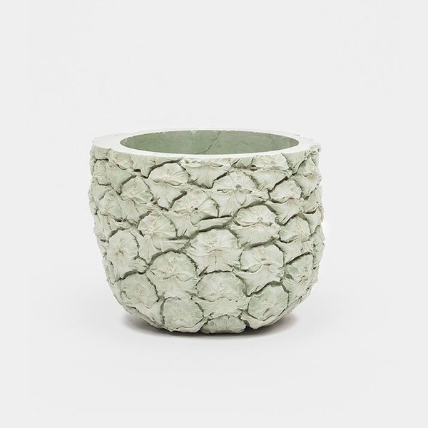 Chen Chen & Kai Williams Pineapple Fruit Planter
