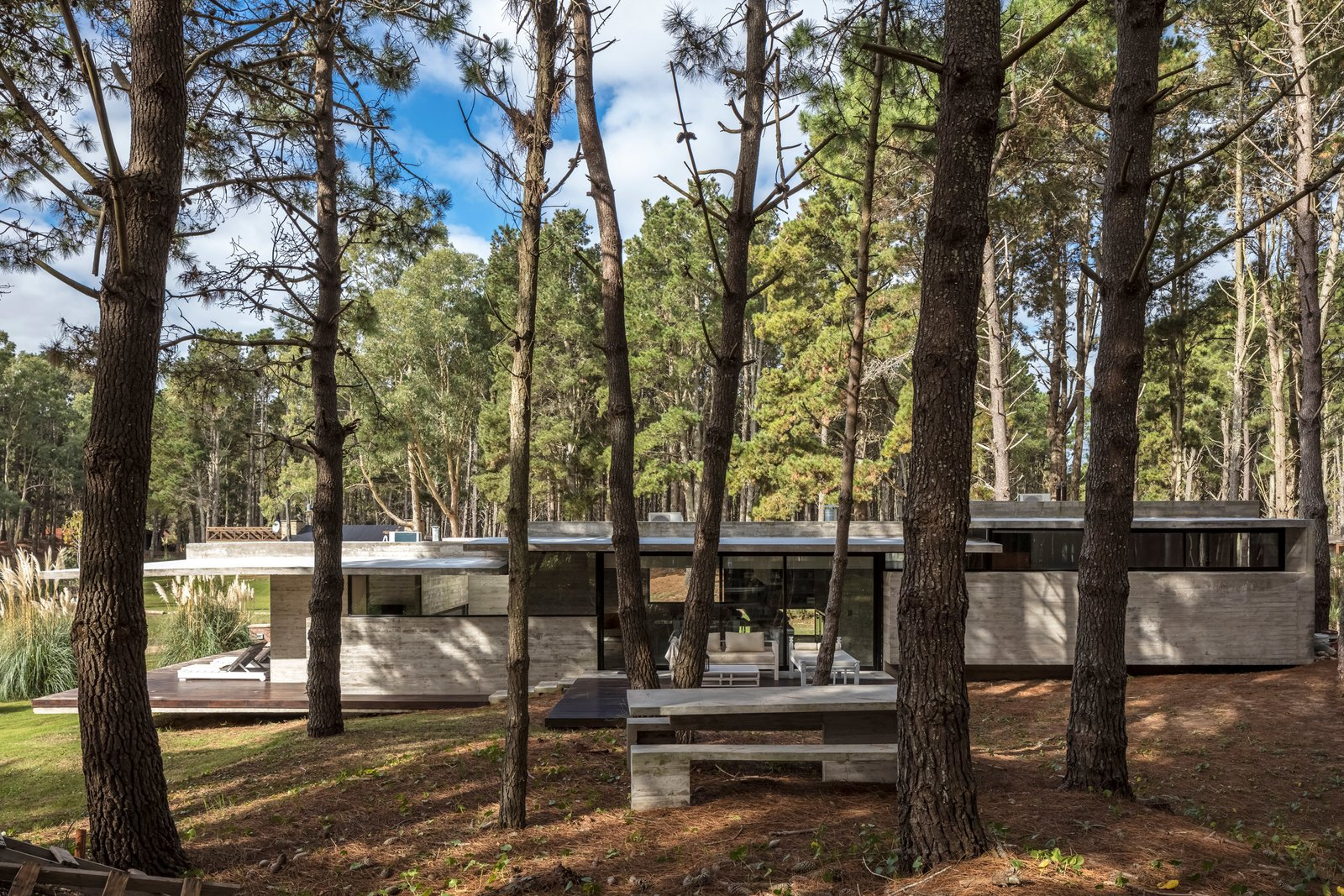 A Staggered Concrete Home in Argentina Nestles in the Woods